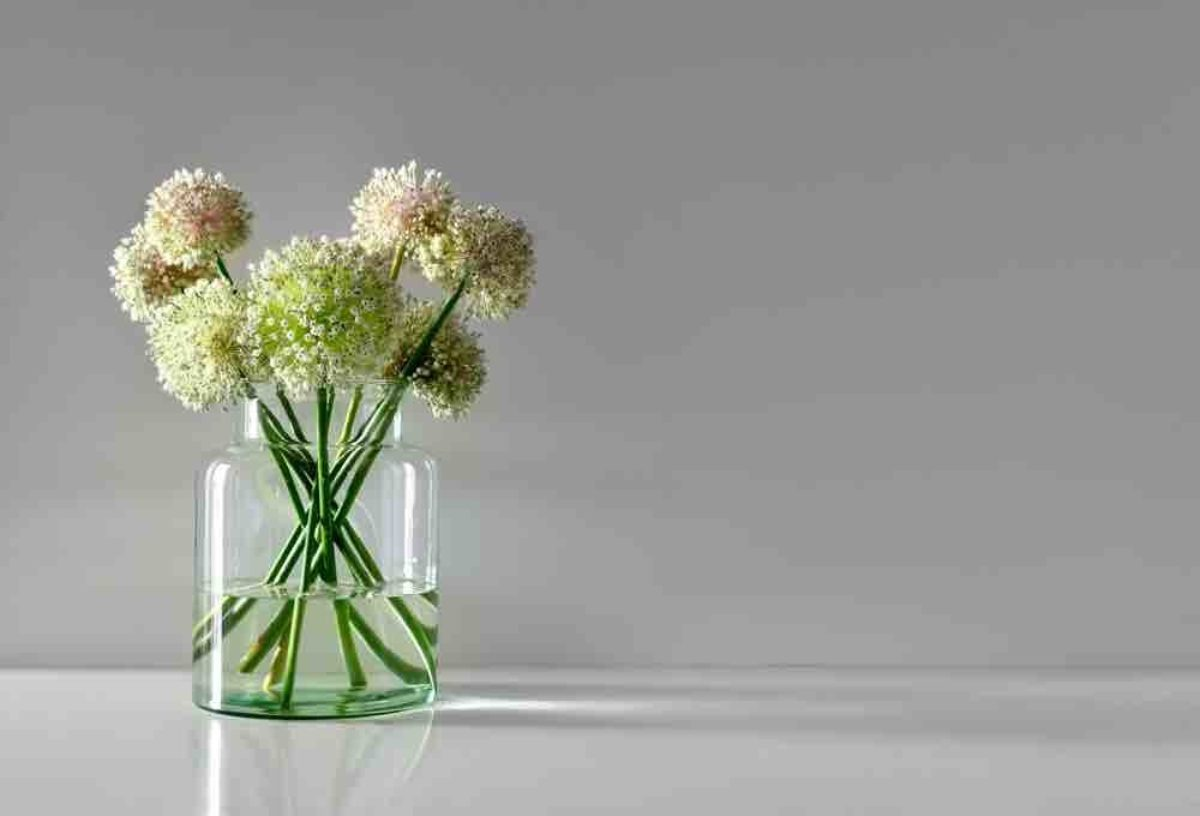 Simple flowers arranged in a simple glass vase, against a plain background
